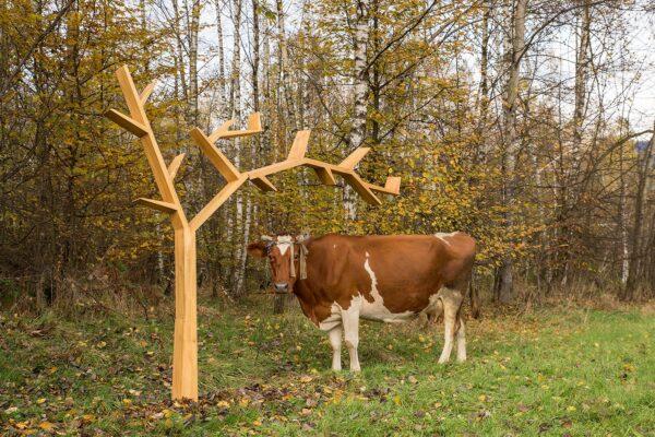drewniana półka w kształcie drzewa