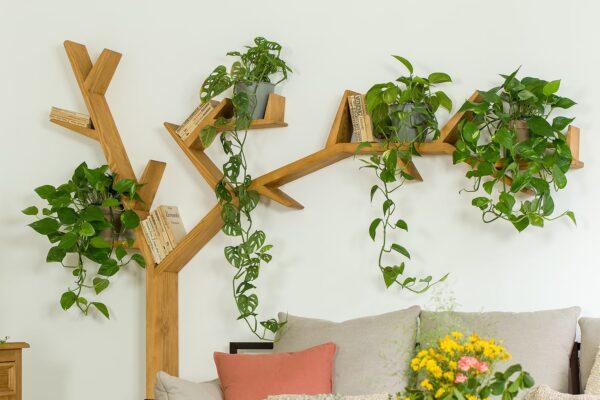 półka w kształcie drzewa