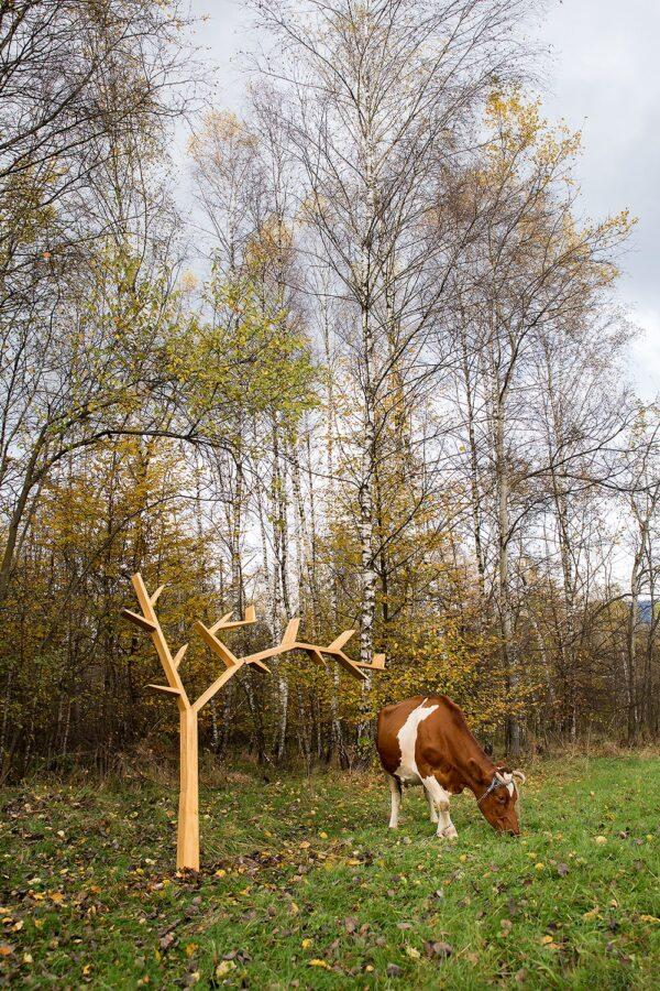 woskowana półka w kształcie drzewa
