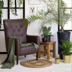 skórzany fotel do salonu